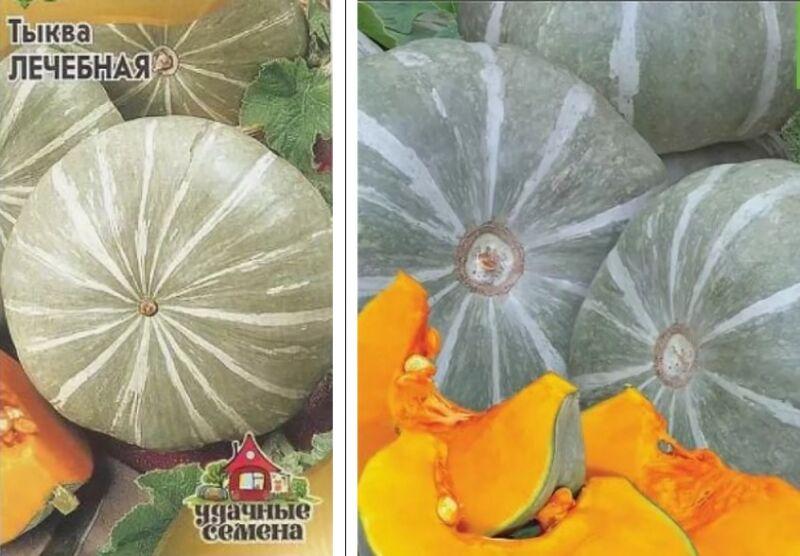 semena-tykv-luchshie-sorta
