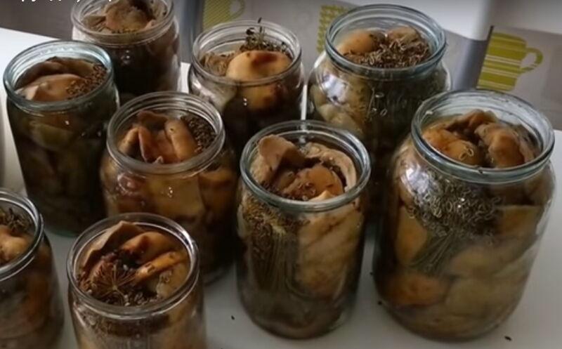 Как отмачивать грибы для засолки