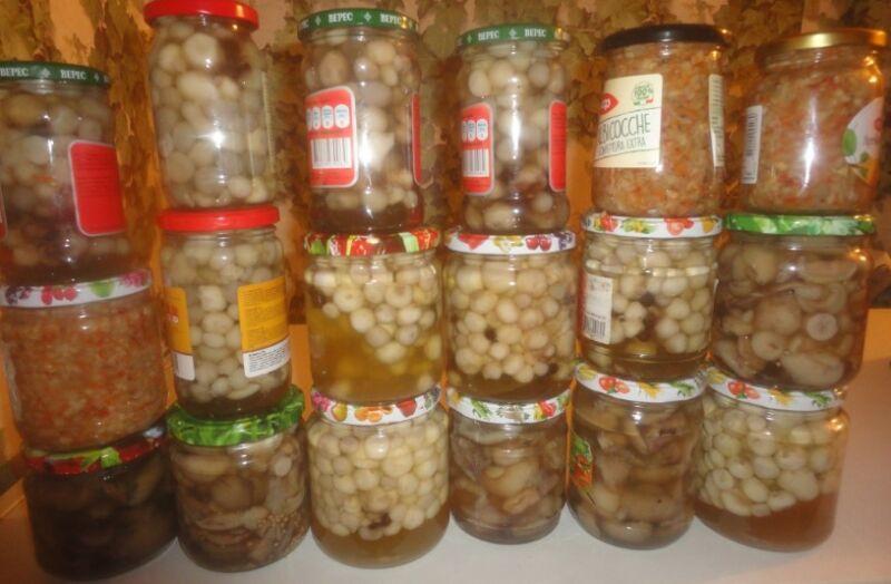 Грибы шампиньоны (дождевики) на зиму в банках – 8 вкусных рецептов заготовок