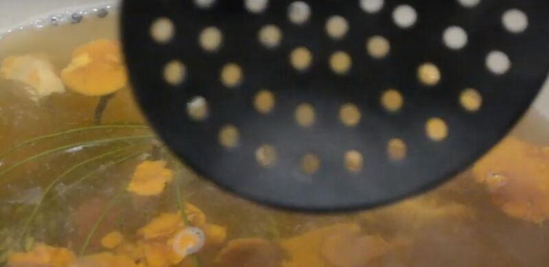 griby-solyonye